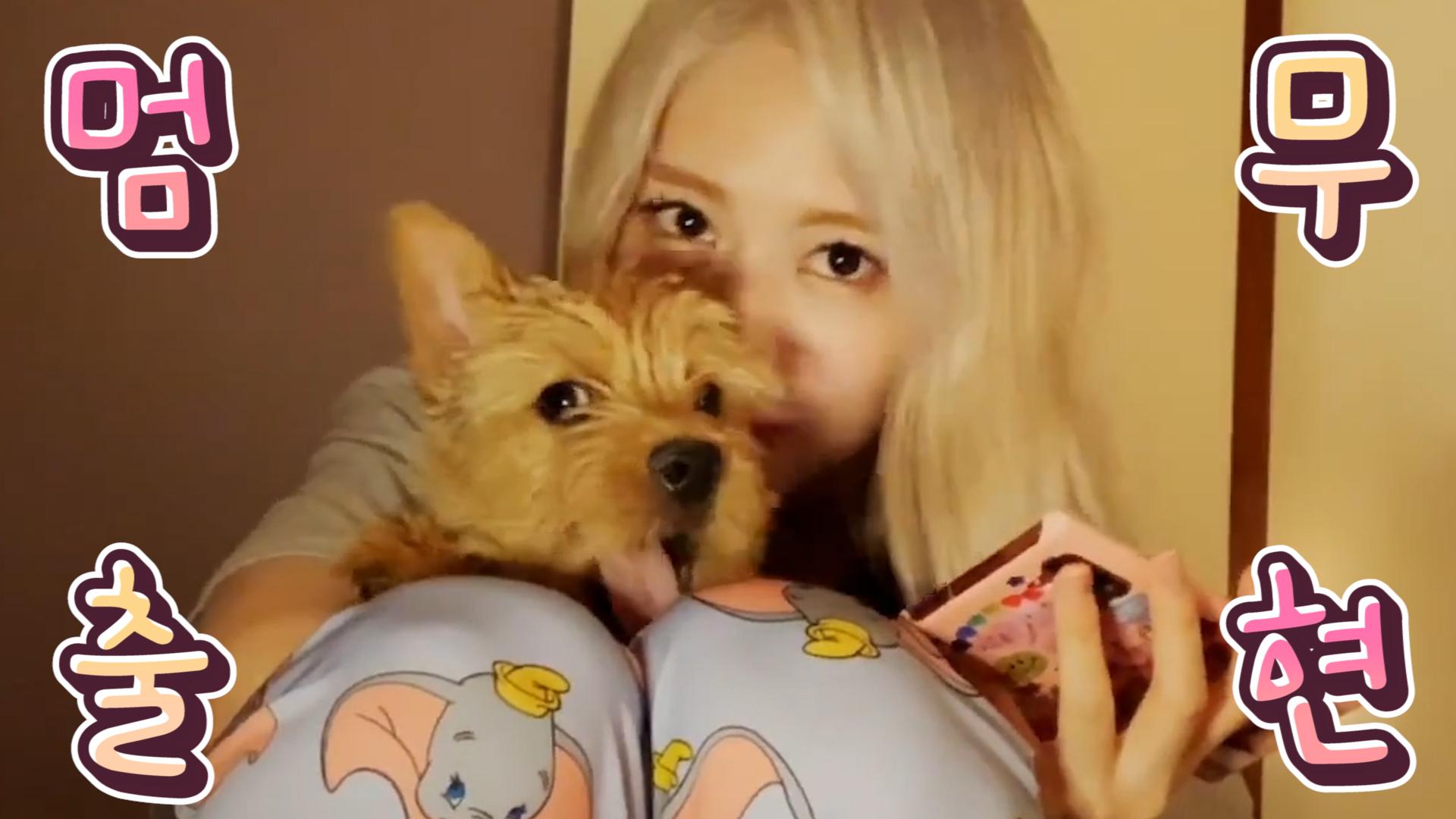 [TWICE] 부로 개명하실 분들 빨리 줄 서세요 줄!!🚶♀️🚶♂️🚶♀️🚶♂️🚶♀️… (MOMO's V with her dog)