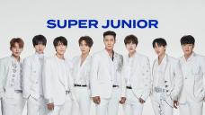 SUPER JUNIOR - Beyond the SUPER SHOW [MAIN CAM]