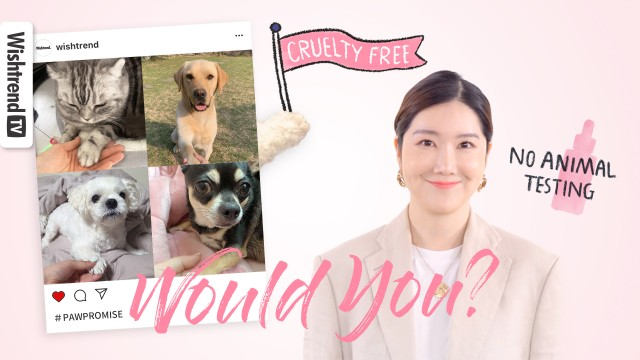 How You Can Help Save Animals With Conscious, Ethical Beauty   Why You Should Shop Cruelty Free!
