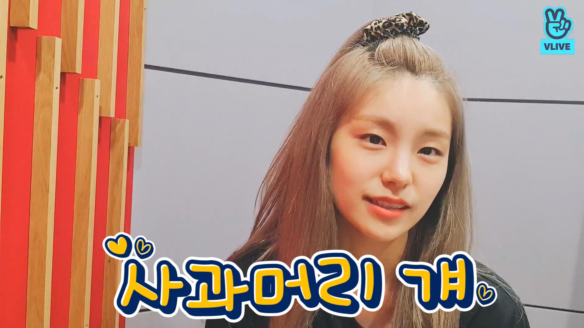 [ITZY] 교환 구해요‼️ 저: 브이픽 / 님: 레드와인 사과머리 걔 기억공유🍎 (YEJI talking about apple hair episode)