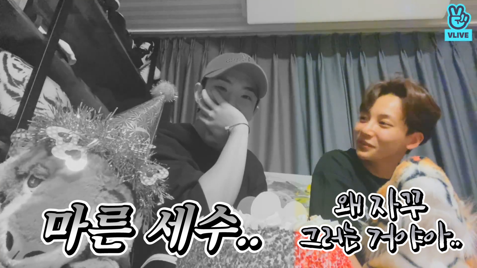 [SEVENTEEN] 🎉선 스포 → 후 홋절부절 호랑이 생일잔치🐯 (HAPPY HOSHI DAY!)
