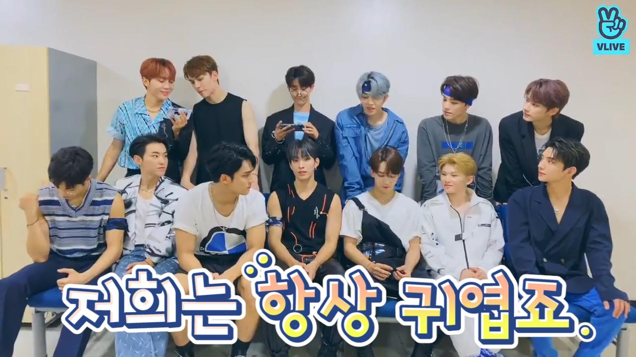 [SEVENTEEN] 🥕: 세븐틴 귀엽다!! 💎: 저희는 뭐 항상 귀엽죠 (SEVENTEEN talking about their clothes)