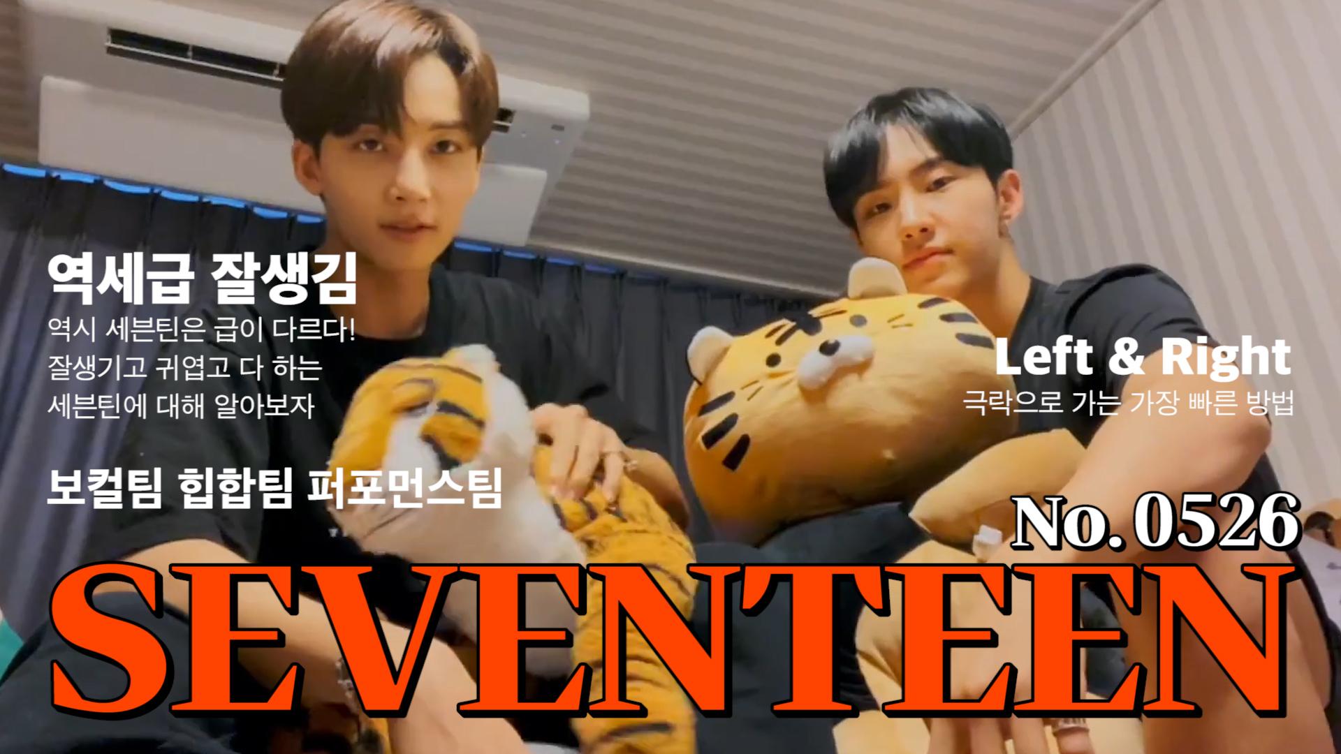 [SEVENTEEN] 쫑쫑이와 깽깽이의 🐰모여봐요 호랑이의 방🐯 (Jeonghan&Hoshi showing Hoshi's tiger dolls)
