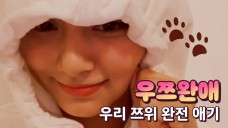 [TWICE] 이쯔쯔하.. 울 쯔 얼굴만 보면 머리에 자동입력이야🐶🐱 (TZUYU talking about her nicknames)
