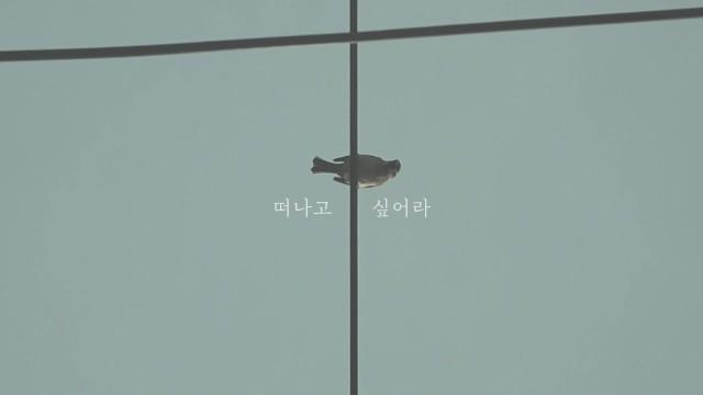 가을방학 - 세상은 한 장의 손수건 Teaser