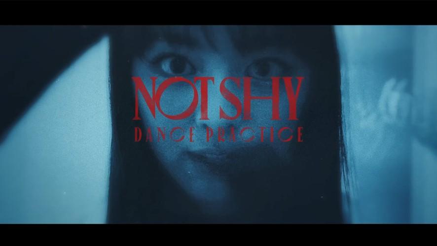 "ITZY ""Not Shy"" Dance Practice (Horror Special Ver.)"