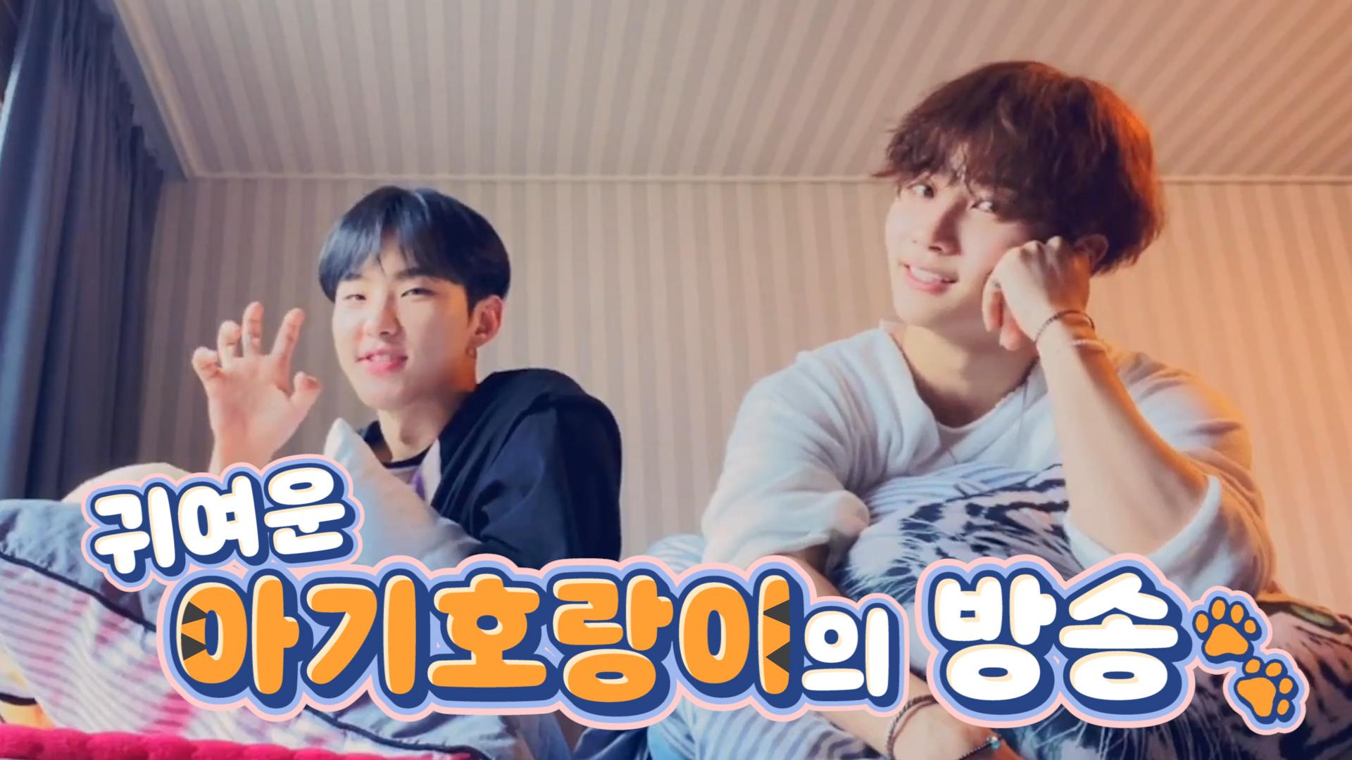 [SEVENTEEN] 다시는 호랑이(햄찌 아님)를 놀리지 않겠습니다😭 (Hoshi&Jeonghan talking about Hoshi's nickname)