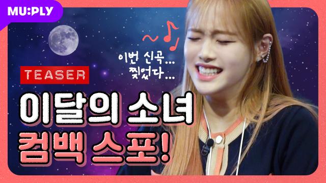 전세계가 주목하는 이달의 소녀 컴백 스포 합니다🔥🔥
