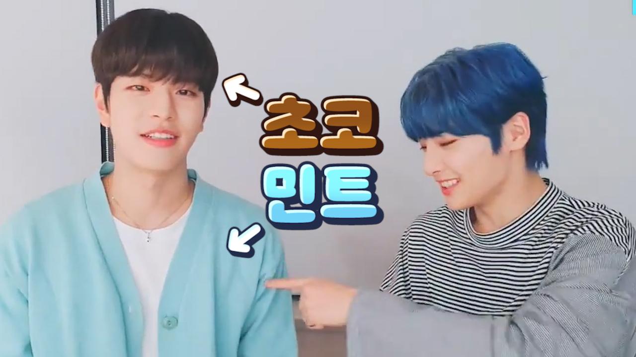 [Stray Kids] 세계유일 호불호 안 갈리는 민초 여기 있지🌿🍫 (Seungmin & I.N talking about Seungmin's mint cardigan)