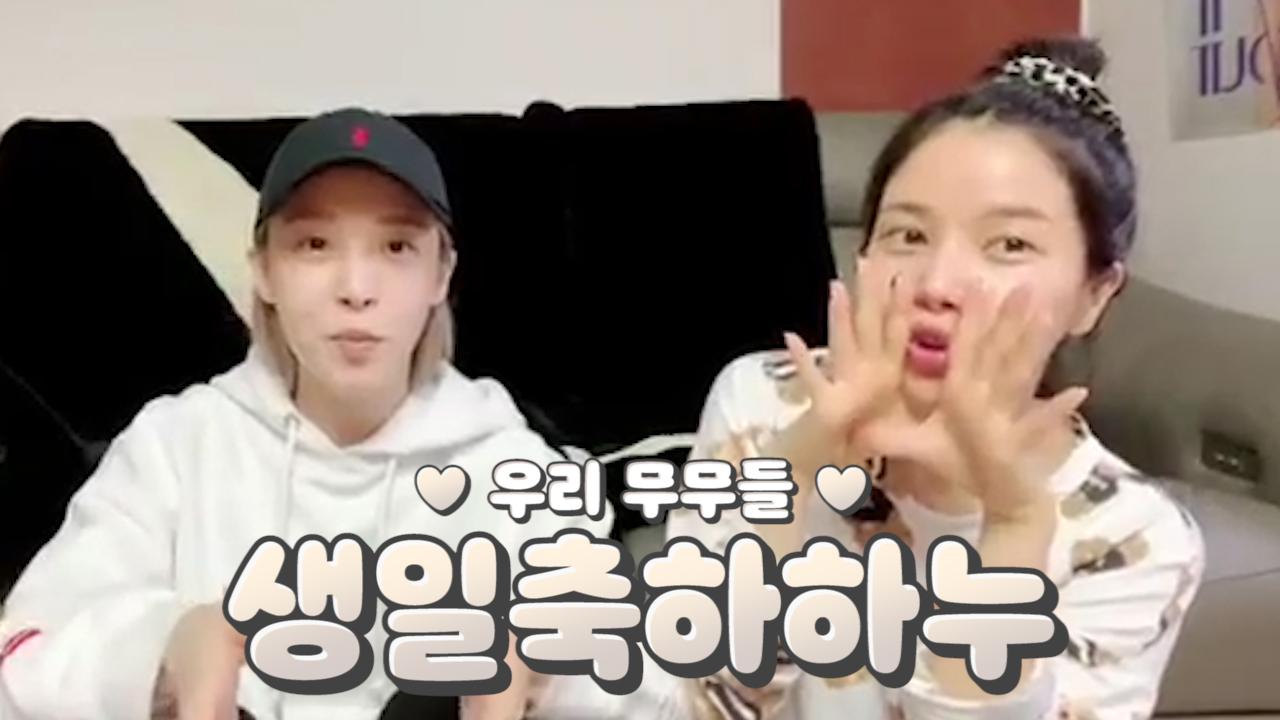 [MAMAMOO] 엄마.. 무무하면 용콩별콩이 내 생일도 축하해준다🥳🎉 (MOONBYUL&SOLAR singing a birthday song for MOOMOO)