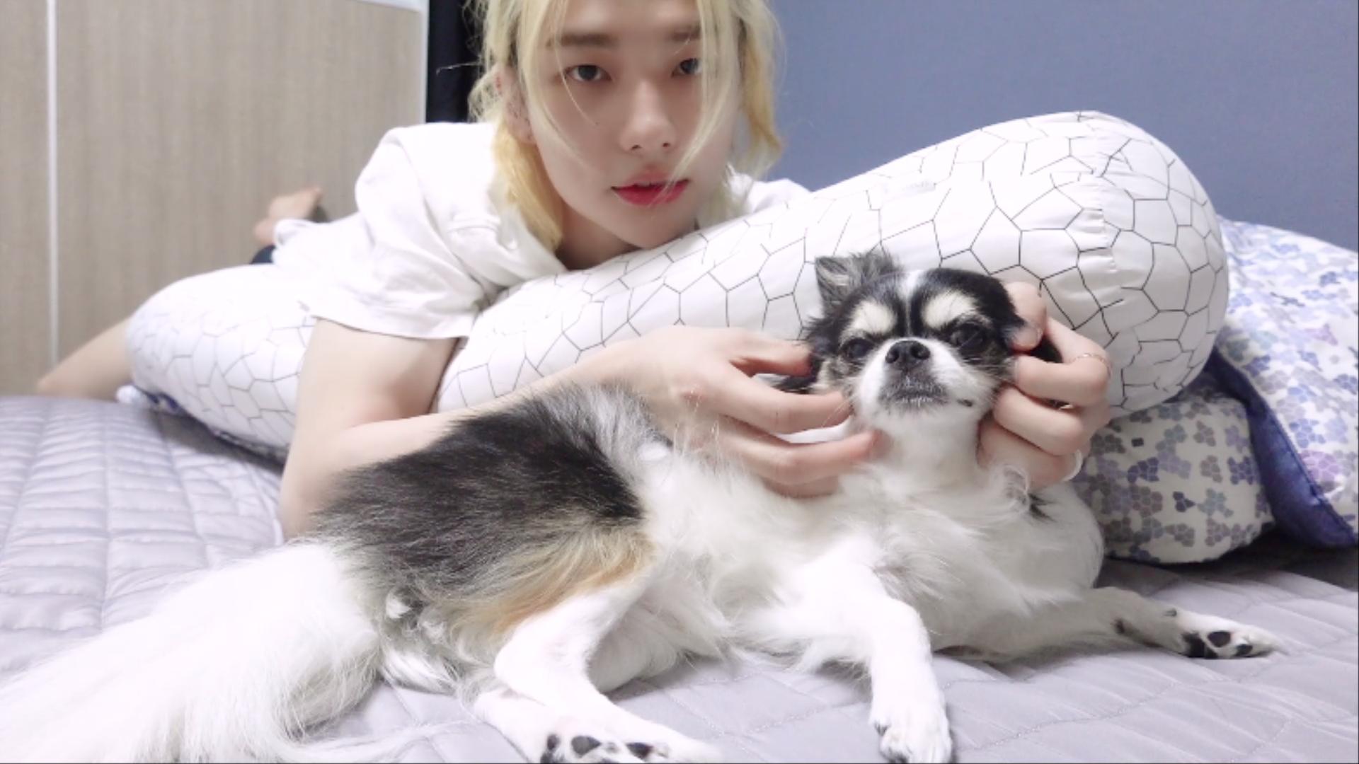 [SKZ VLOG] 현진 : Hyun.e's Holiday with 까미 2