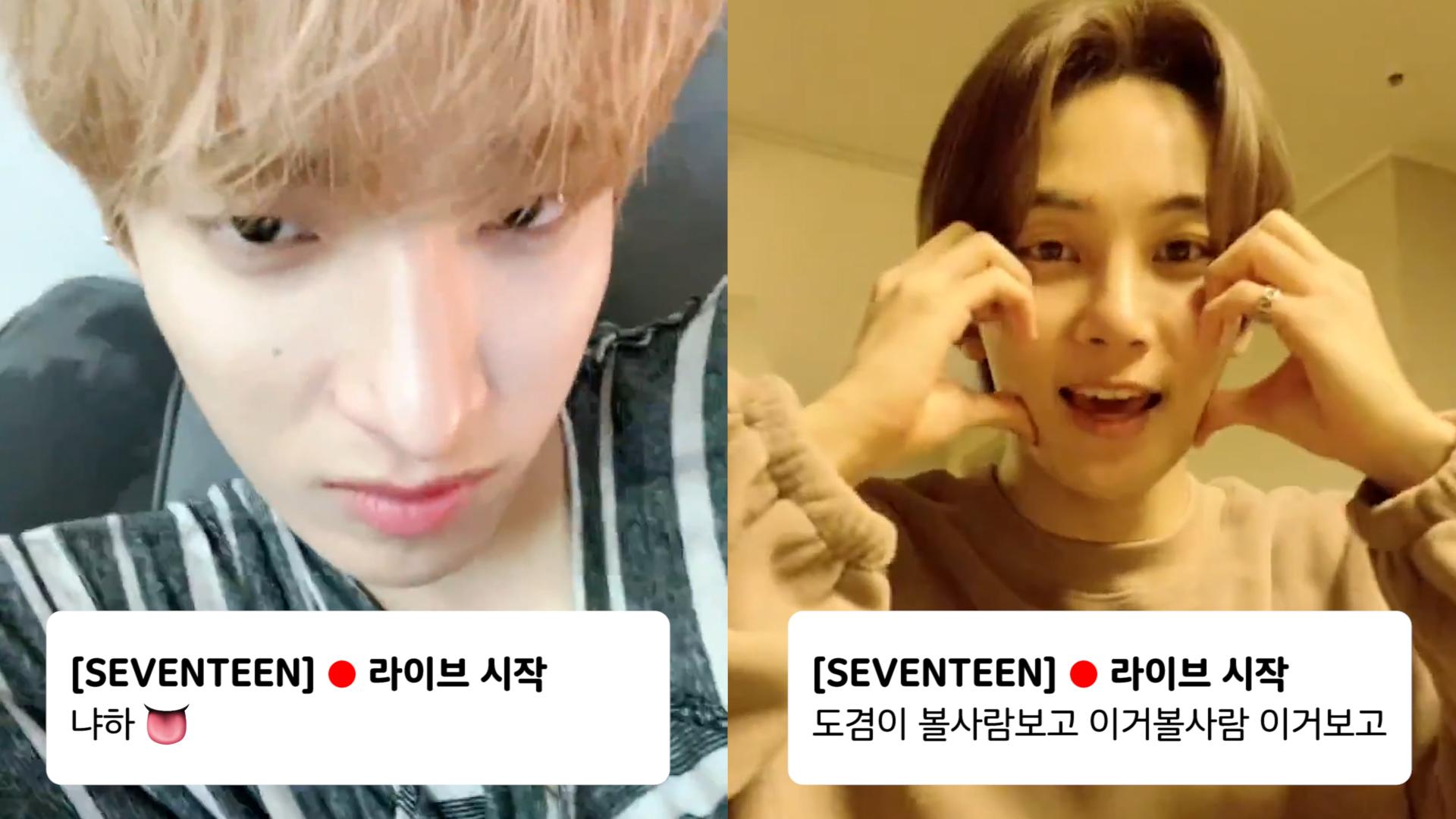 [SEVENTEEN] 세븐틴 더블브이앱 한 줄 요약 → 갑자기⁉️ (DK&Jeonghan's V at the same time)