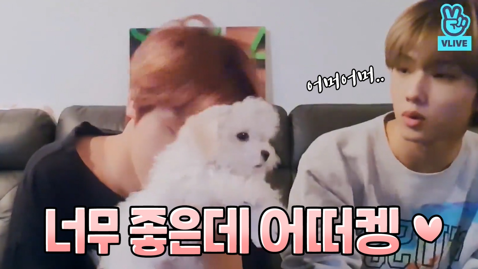 [NCT] 대갈공주 브이앱 데뷔 귀엽고 난리나요..🐶💚 (So cute CHENLE's puppy)