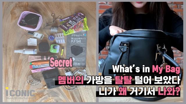 [what's in My Bag] 멤버의 가방을 탈탈 털어 보았다👜 (Feat.니가 왜 거기서 나와)
