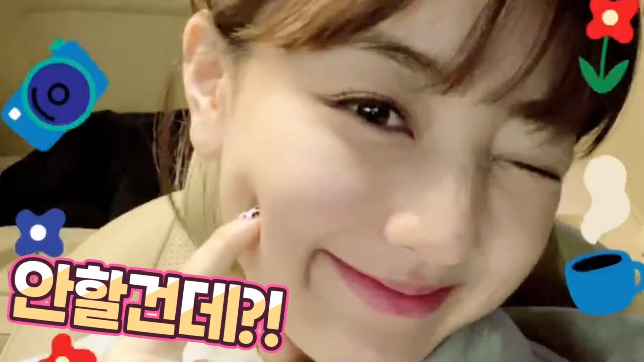 [TWICE] 두목님 오늘도 너무 귀여우시지 말입니다💗 (HAPPY JIHYO DAY!)