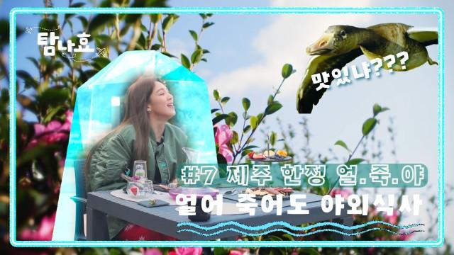[탐나효 EP.7]  제주에서 만난 새 친구한테 치이고✿제주 꽃길에 치이는 심쿵 유발 영상