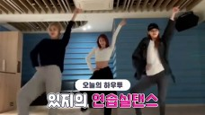 [VPICK! HOW TO in V] HOW TO DANCE ITZY's dance practice🐱