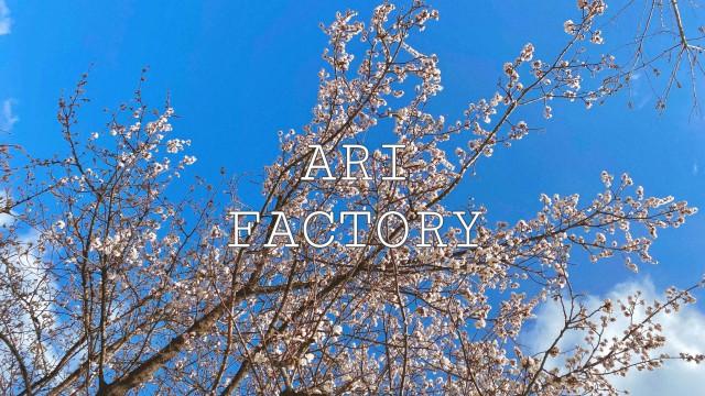 [재업로드] 'ARI Factory' V-Log 아리의 산책 EP.08🌸