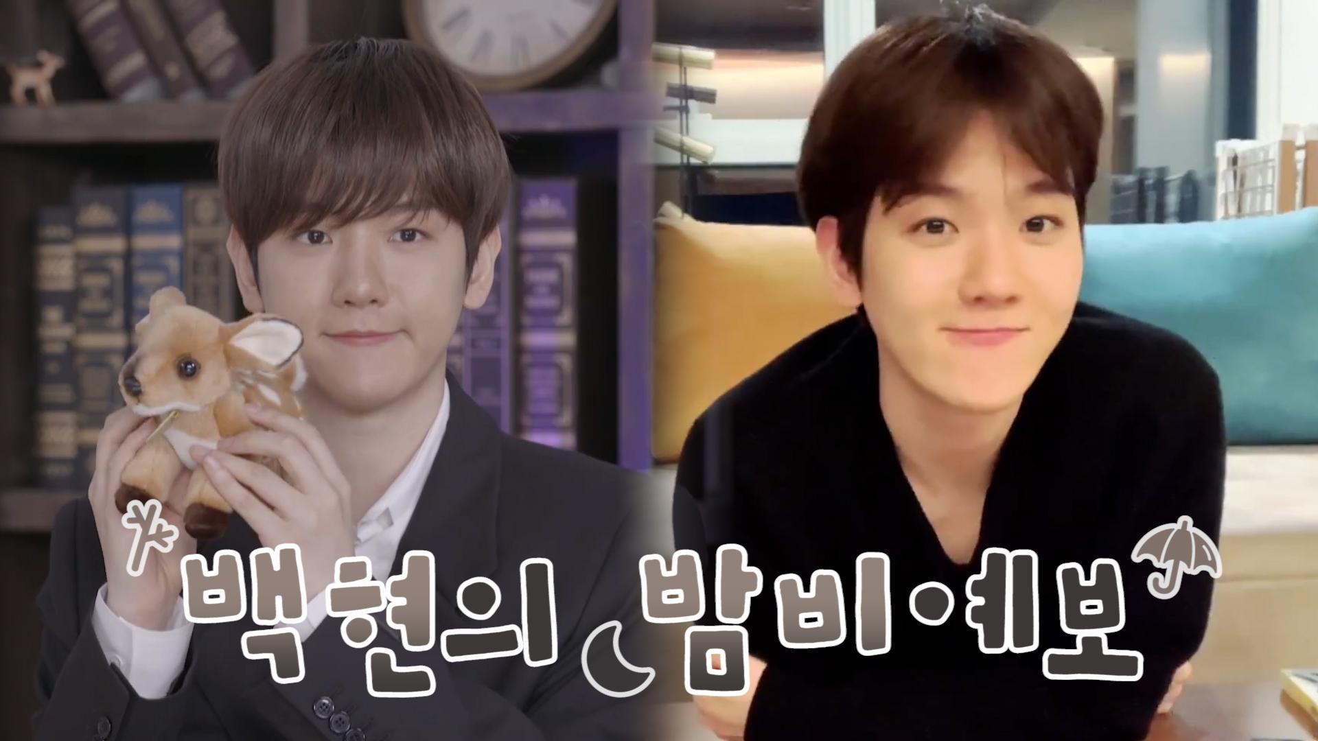 [EXO] 변백현 정말 유일무이 원앤온리 마이 라스트 아이돌❣️👍(BAEKHYUN talking about his new album 'Bambi')