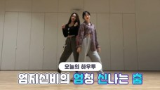 [VPICK! HOW TO in V] HOW TO DANCE UMJI&SinB's dance practice🐹🐱