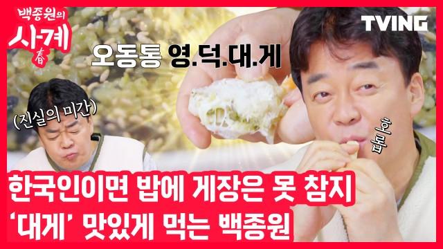 [백종원의 사계] 영덕 현지에서 대게찜부터 탕, 게장 비빔밥까지! 근데 이제 꿀팁을 곁들인
