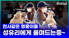 Cute puppies clinging to 'Sung Yuri' (Don't go~ Don't go~)
