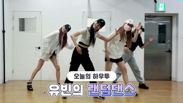 [VPICK! HOW TO in V] 블링블링 유빈의 랜덤댄스🐶 (HOW TO DANCE YUBIN's Random Dance)