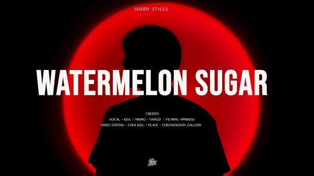 Harry Styles - Watermelon Sugar (cover by 기수KISU)
