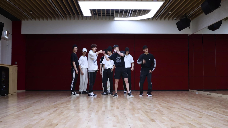 "Stray Kids(스트레이 키즈) ""DOMINO"" Dance Practice Video"